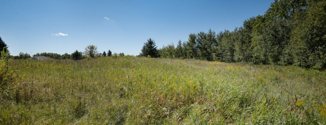 Lot 28 566th Ave05.jpg-SMALL